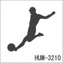 HUM-3210