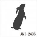ANI-2436
