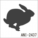 ANI-2437