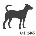 ANI-2465