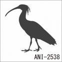 ANI-2538
