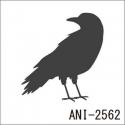 ANI-2562